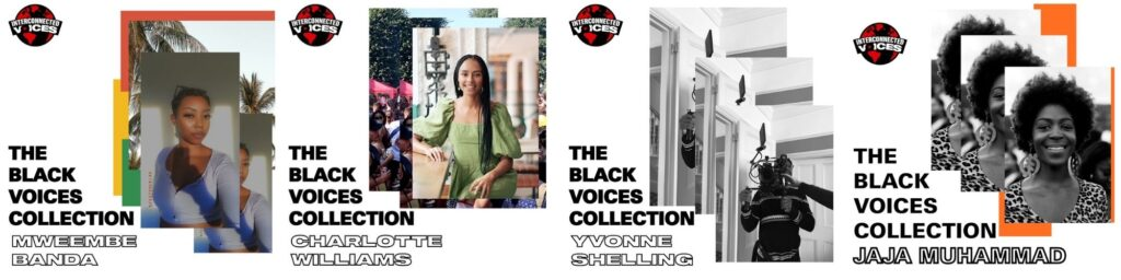 Black Voices Collection banner